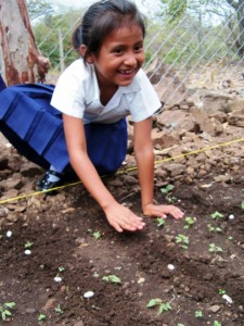 A young gardener at work.